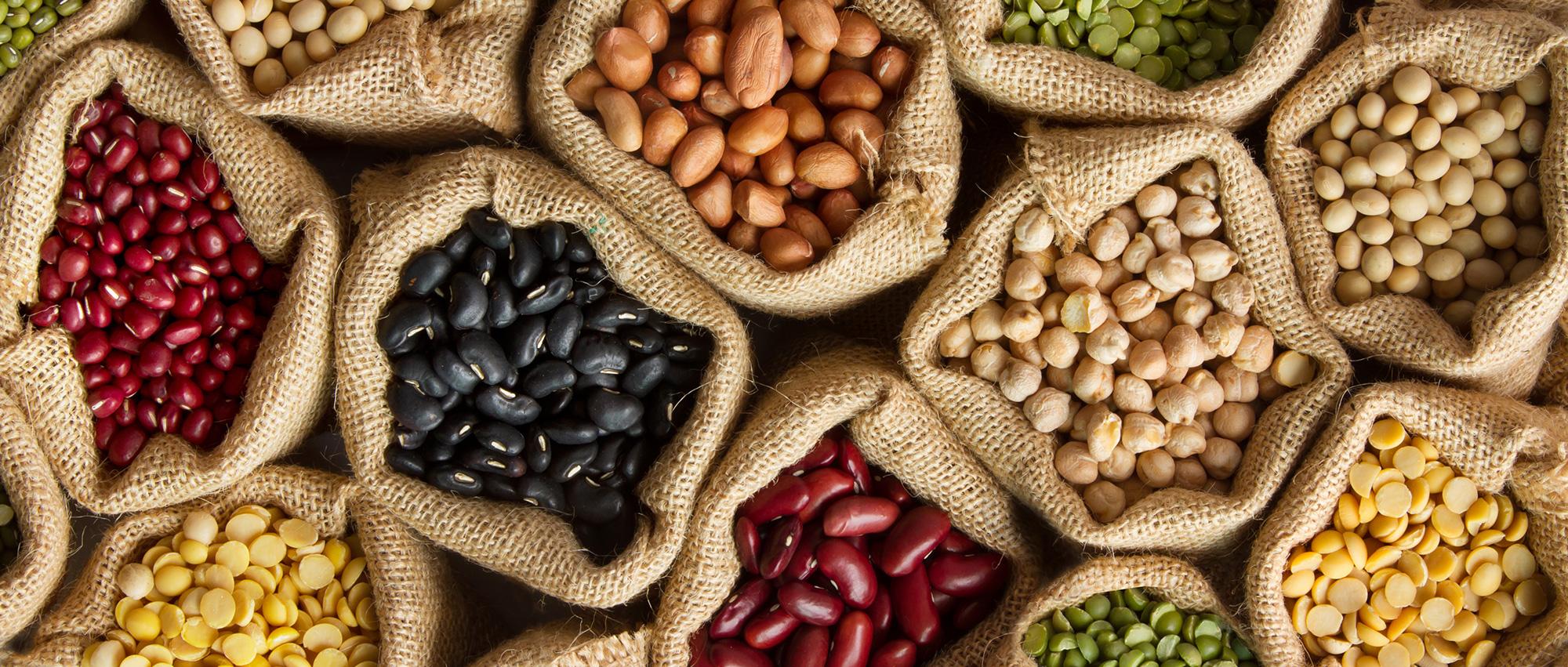 雑豆のイメージ画像